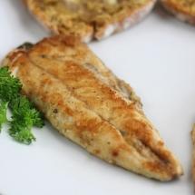 Mackerel Fry