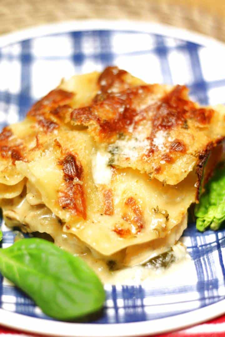 chicken lasagna alfredo