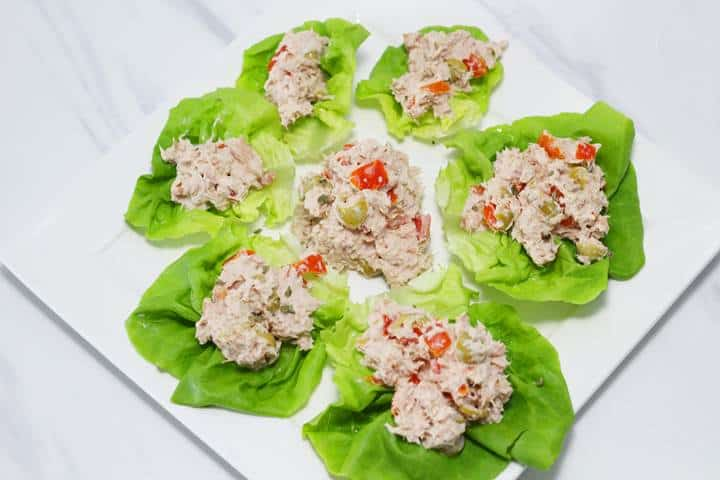 Tuna dairy and gluten free appetizers for parties