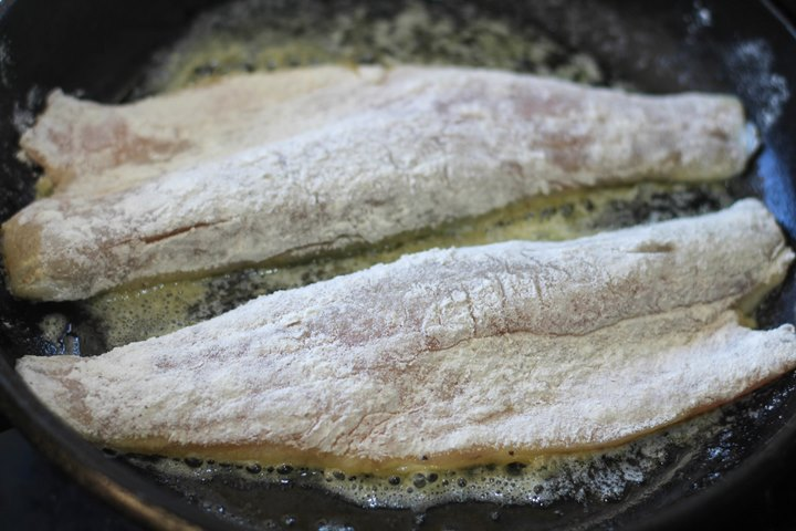 pan searing sea bass