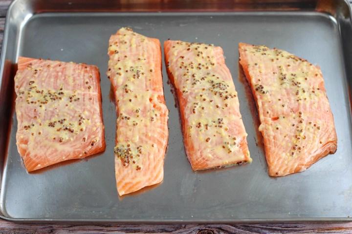 pre-basted salmon fillets